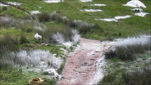Artificial snow was laid in the Brecon Beacons
