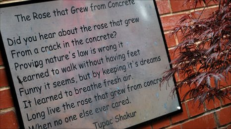 2pac the rose that grew from concrete lyrics