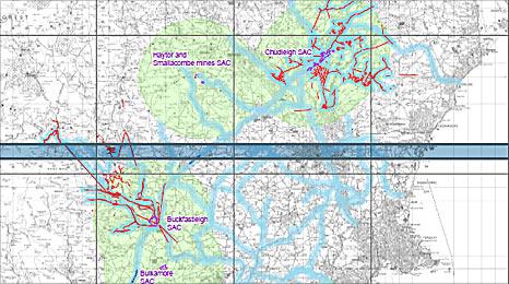 Bat flyway map: Natural England