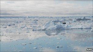 Arctic Ocean - file image