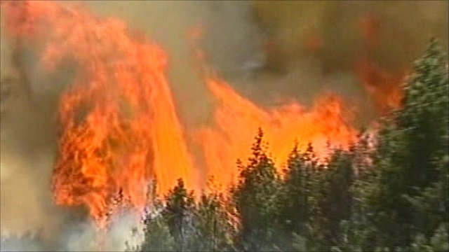 Fire blazing in Russian forest