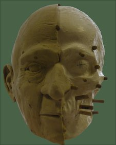 Facial reconstruction in progress.Copyright: Dr Alan Ogden.
