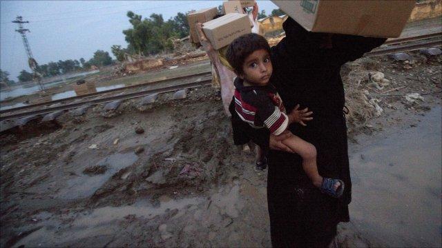 Snakes Business in Pakistan Snakes Attack Pakistan Flood
