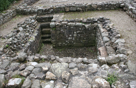 The old cellar