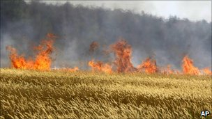 Cereals burning near the town of Voronezh