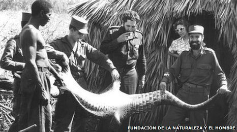 Fidel Castro and Nunez holding the skin of a crocodile