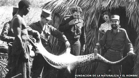 Fidel Castro and Nunez holding the skin of a crocodile