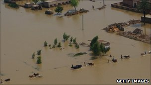 Farmers lead their animals through floodwaters in Pakistan