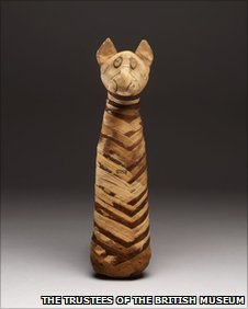 Egyptian cat mummy