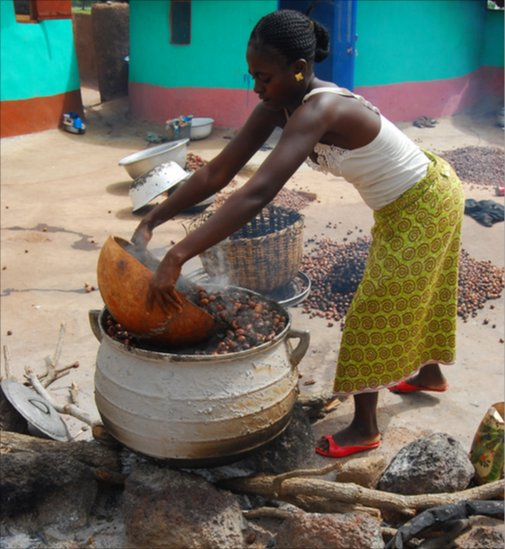 Bbc News In Pictures Making Shea Butter