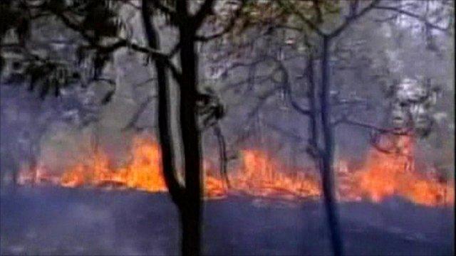 Forrest fires, Brazil