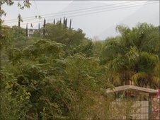 Sierra Madre's tropical landscape