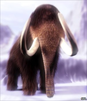 Woolly mammoth (Image: Science Photo Library)