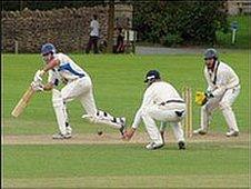 Herefordshire cricket
