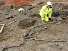 Neil Redfern from English Heritage with the remains of a horse, found under a building. Image courtesy of COI Yorkshire & Humber