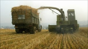A self-propelled combine harvester on a field near a village of Meshcherskoye, some 50 km south of Moscow