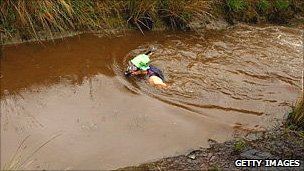 Bog snorkelling