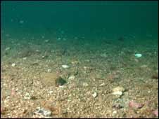 seabed near Arran