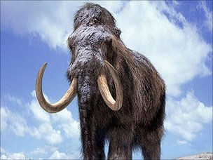 Artist's impression of mammoths (BBC)