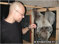 Mr Nyakatura feeds a sloth