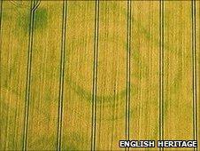 Rings in field