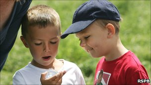 Two boys look into a bug box