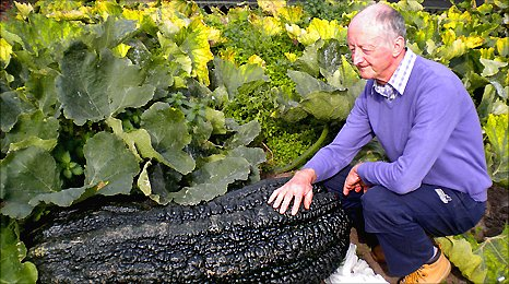 Peter Glazebrook next to a 150lb marrow in his garden