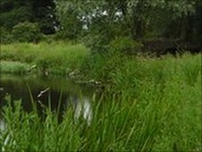 Cambridgeshire countryside