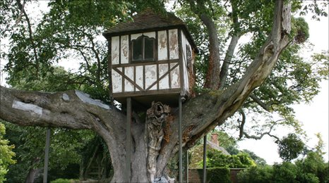 Pitchford Tree House