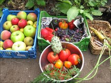 Produce from allotments