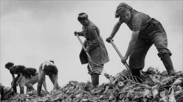 Land girls at work