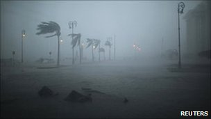 Palm trees sway in strong winds brought by Hurricane Karl at Veracruz. Photo 17 September 2010