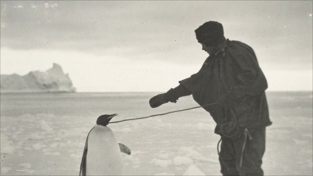 An explorer with a penguin during the 1910 Antarctic expedition