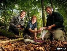 New Forest National Park Authority Ecologist Ian Barker, Paul Eggleton, Head of the Natural History Museum's Soil Biodiversity Group and Museum researcher Dr Dan Carpenter collect samples in Whitley Wood, Lyndhurst.