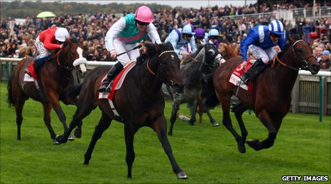 Champion Stakes 2009 at Newmarket