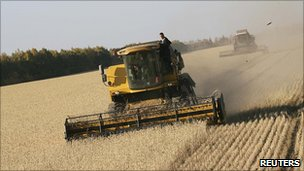 Harvest in the Altai region of Russia. 22 Sept 2010