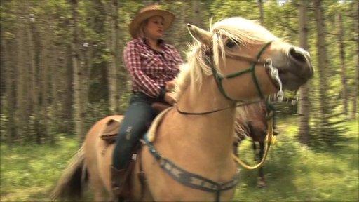 Cowboy Training