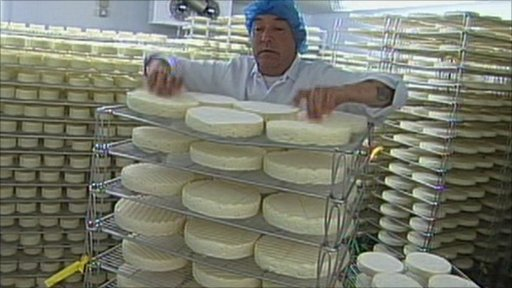A Cornish cheese company is beating the French at their own game by producing award winning soft cheeses including brie