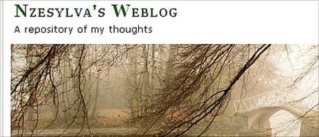 NzeSylva's Weblog banner © http://nzesylva.wordpress.com/