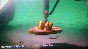 ROV camera showing images from the seabed