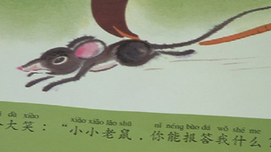 A learning Mandarin Chinese book
