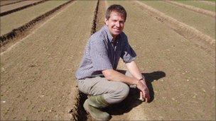 Pea farmer and Anglia Pea Growers chairman Richard Hirst