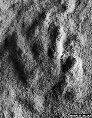 Footprint (Grzegorz Niedzwiedzki)