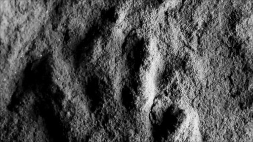 Oldest dinosaur lineage fossils