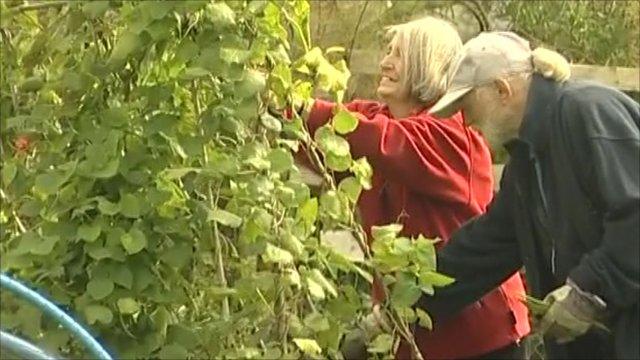 Derek and Teresa Quinn gardening