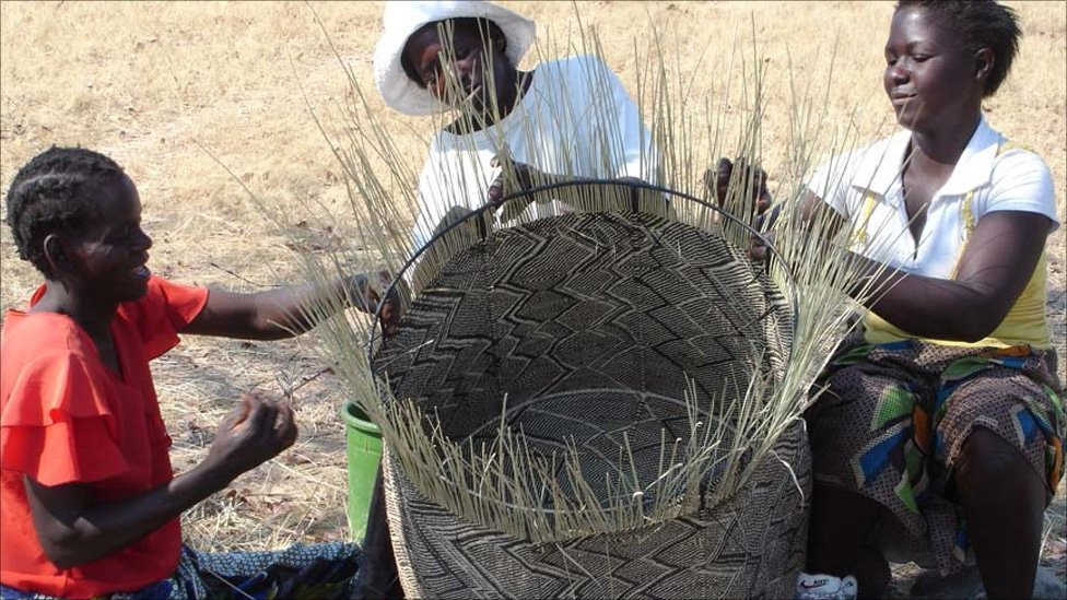 Art Of Basket Making : Bbc news in pictures zimbabwe s basket cases