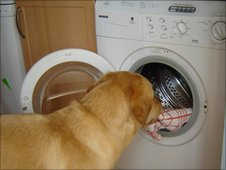 Jenson getting washing out of the machine