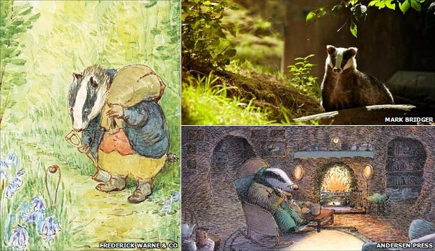 Clockwise from left: Beatrix Potter's Tommy Brock (copyright Frederick Warne and Co); a badger, from Autumnwatch Flickr group; illustration from Badger's Parting Gift