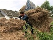 Ukrainian Volodymyr Petrovych carrying hay
