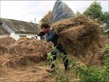 Ukrainian Volodymyr Petrovych carrying hay